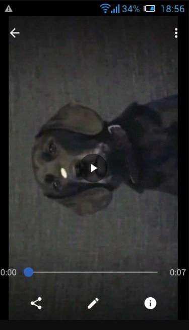 Выбранное видео