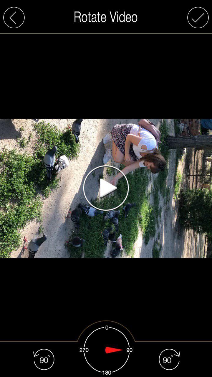 Панель редактирования Rotate & Flip Video
